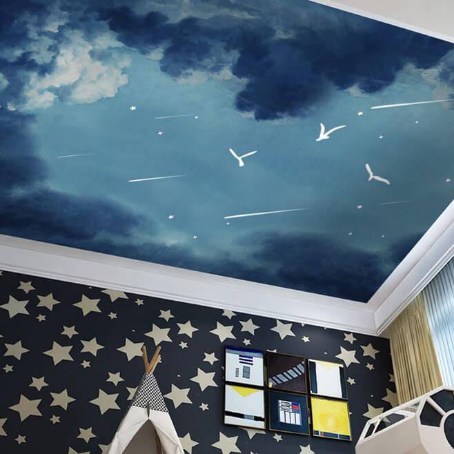 流星飞鸟客厅卧室壁画