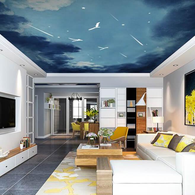 流星飞鸟客厅吊顶壁画