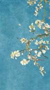 梵高·杏花