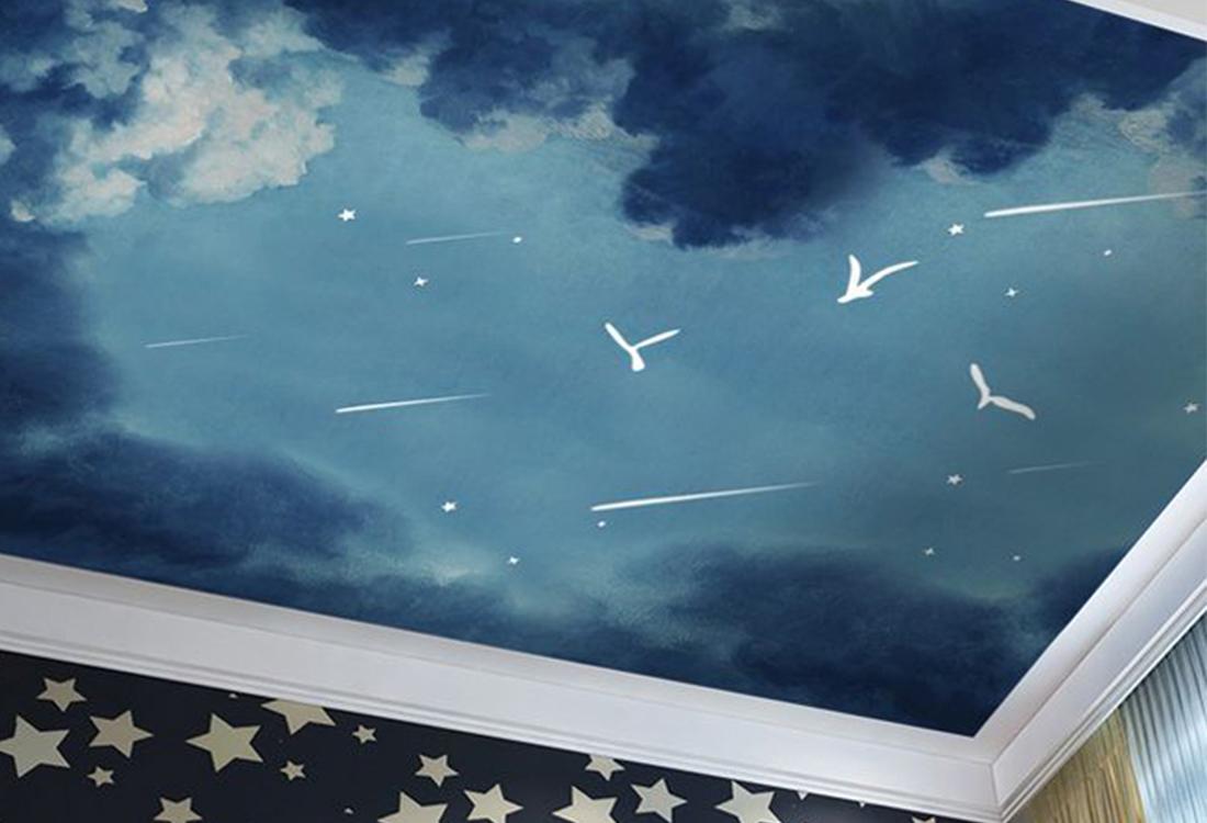 流星夜空吊顶壁画