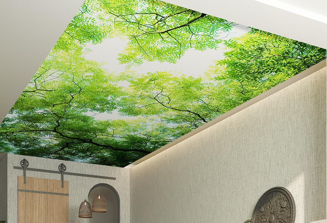 森林仰望天空吊顶壁画