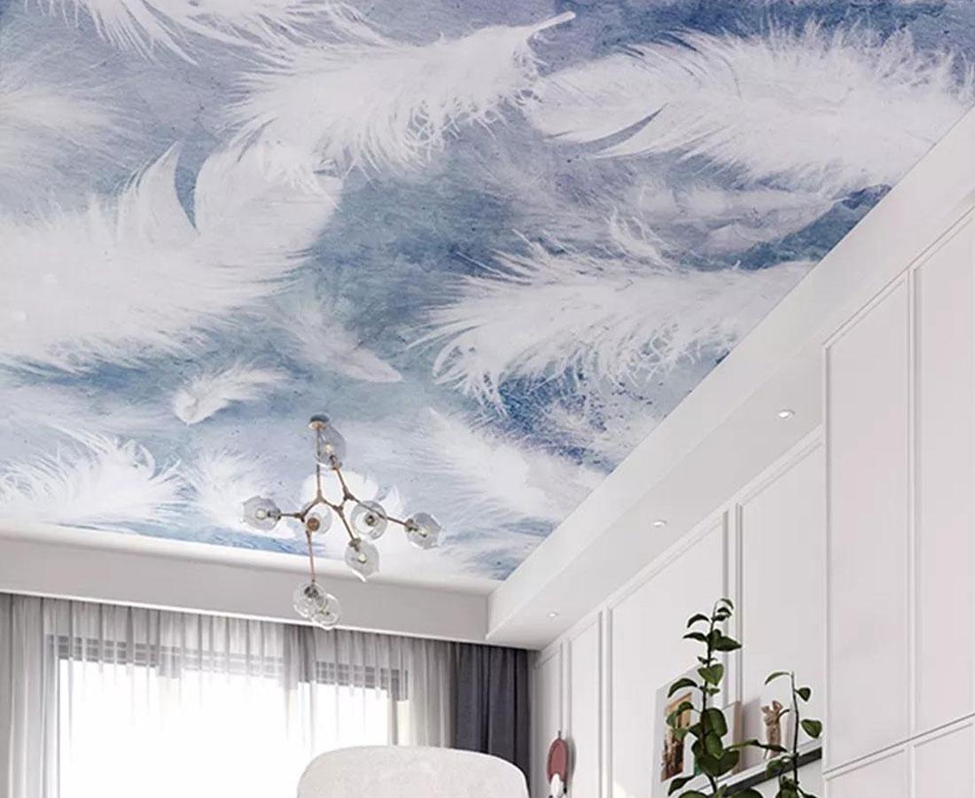 羽毛轻盈飘逸壁画