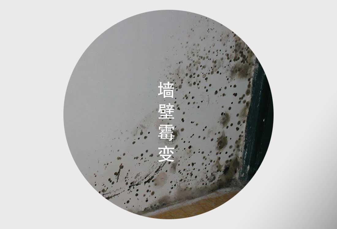 梅雨季节墙面发霉